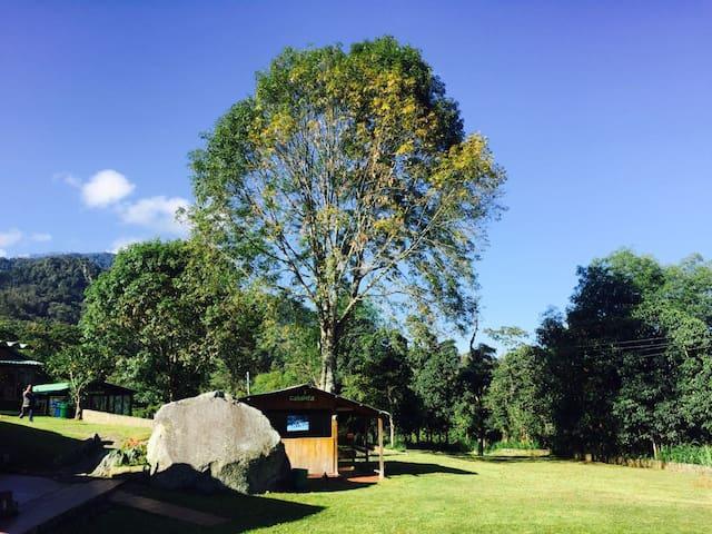 Cabaña de descanso en Parque de Aventura Ecocenter - Tena - Huis