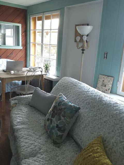 "The ""Short Term II"" furn 1 bedroom Hornell City"