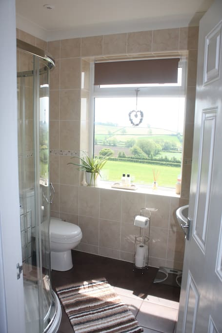 Your bathroom with a view