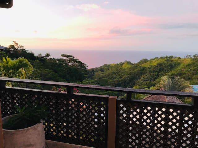 Jungle Room - Te Fiti Island Break