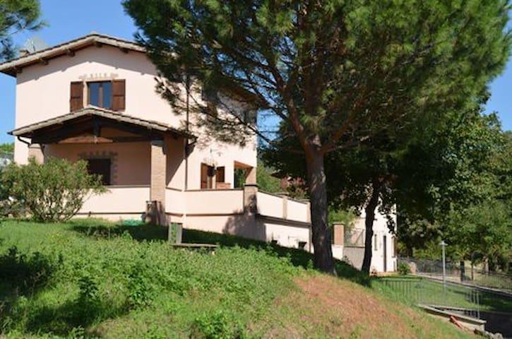 Home 1 - Casa 1