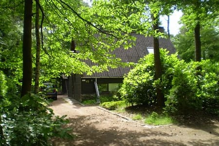 Holiday home de Boshoek with privacy in Eersel - Eersel - Blockhütte