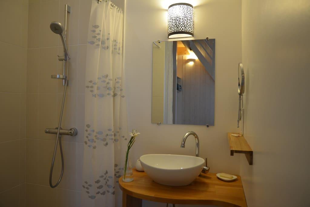 Dans la chambre, vasque et grande douche à l'italienne.