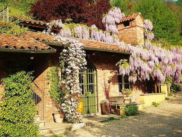 B&B The Home under Wisteria - Torino - House