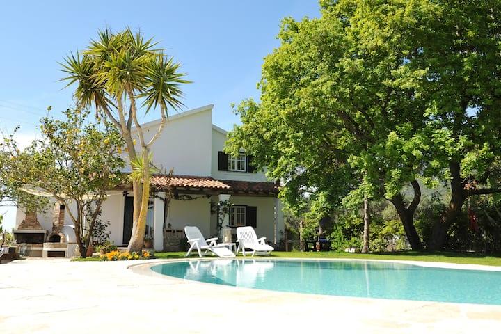 Villa Araxali, Halikounas