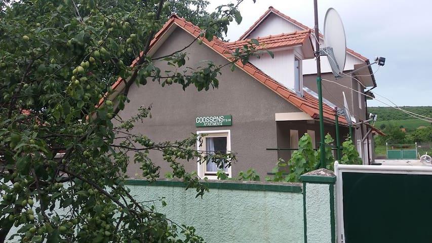 Goossens apartments - Ghioroc - Byt