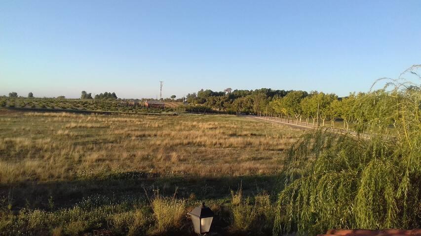 Una casa con vistas al campo de la manchuela.