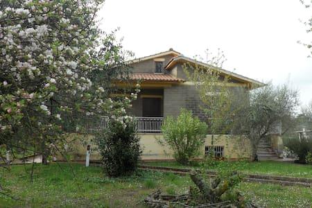 la casa nel verde - Canale Monterano - Talo