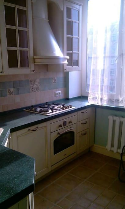 Светлая кухня - посудомойка и духовка