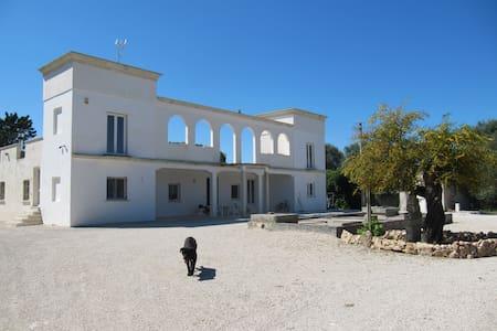 Affittasi appartamento in Villa - Oria - Villa