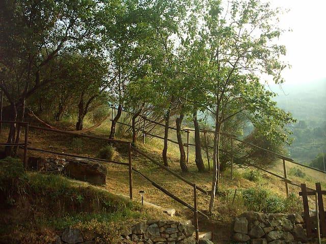 GATTACICOVA nel parco del Gran Sass - Teramo - Bed & Breakfast
