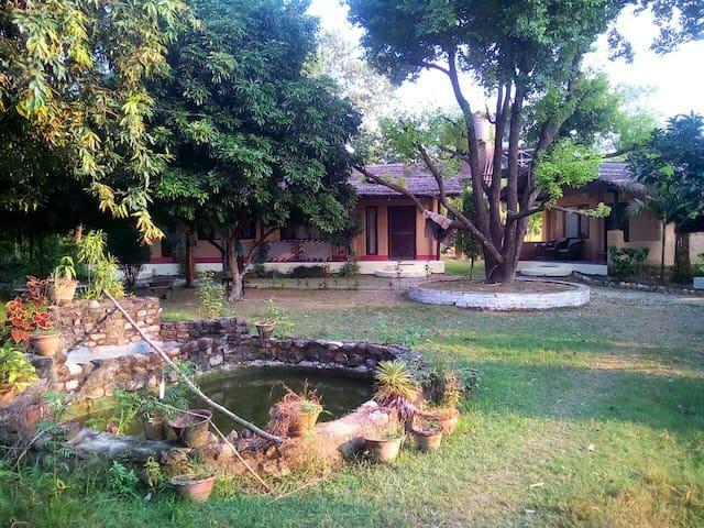 Mango Tree Lodge