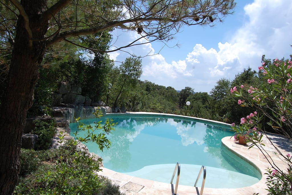 Private Pool surrounded by Woodlands and Olive Groves