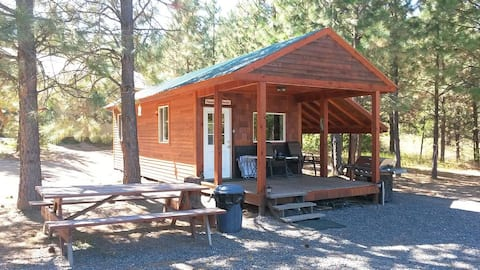 Private Cabin overlooking Lake/full RV Hookup too!