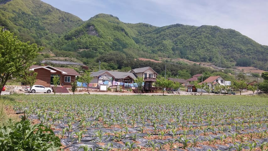 예밀포도마을 팜스테이 체험농장
