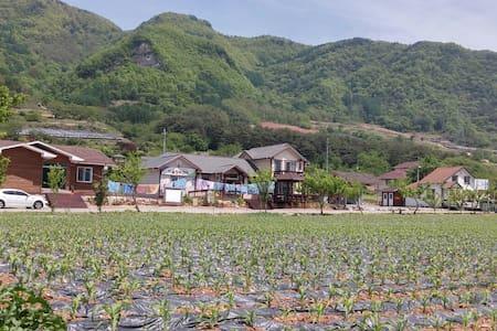 예밀포도마을 팜스테이 체험농장  - Gimsatgat-myeon, Yeongweol - Bed & Breakfast
