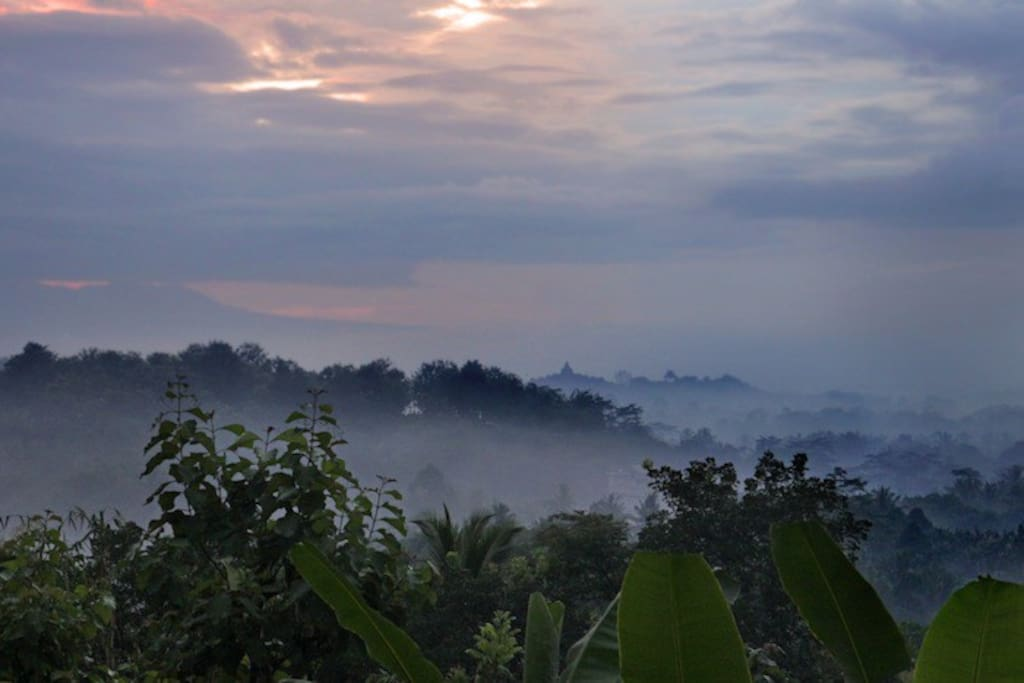 We provide sunrise tour from the hill behind the Borobudur Temple