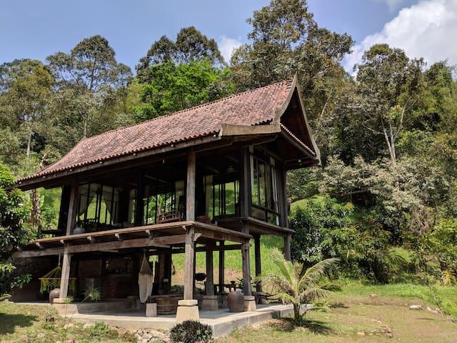 Janda Baik 100 year old Refurbished Wooden Villa