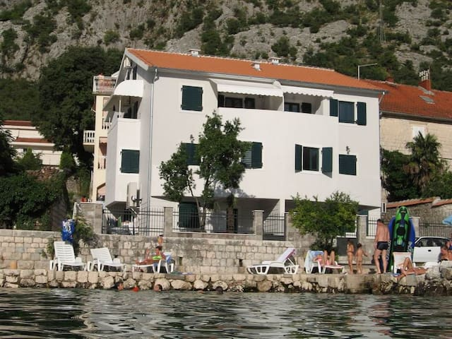 Villa Iva studio - Kotor - Apartment