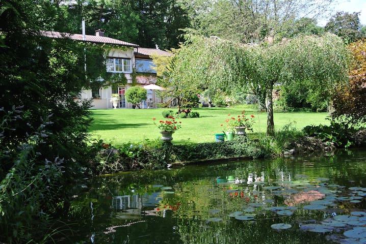 Ferienwohnung Hummel Bad Buchau - Bad Buchau - Appartement