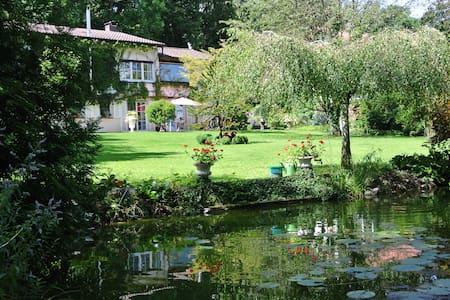 Ferienwohnung Hummel Bad Buchau - Bad Buchau - Huoneisto
