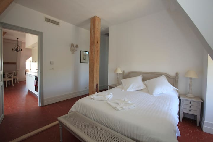 Grd appartm 1 chambre 1 canapé lit - Quarante - Leilighet