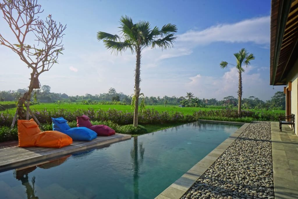 Enjoy the warmth of the sun and the ricefield view