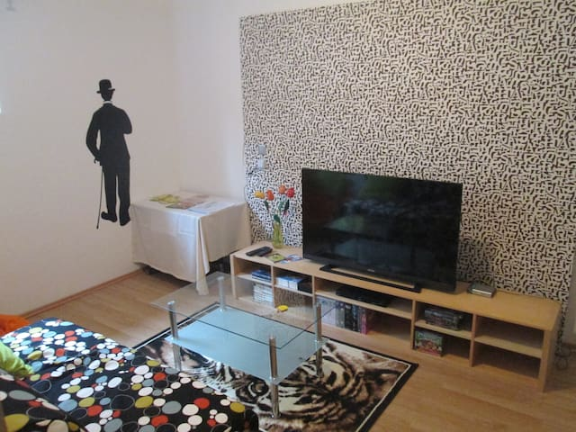 Roomy Vienna 80m2 App. free WIFI - Wien - House