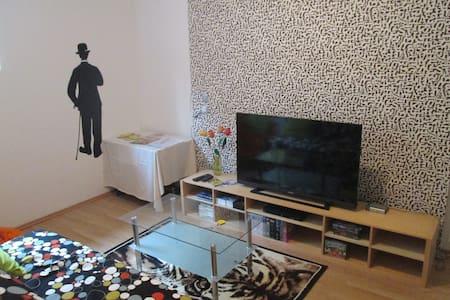 Roomy Vienna 80m2 App. free WIFI - Wien