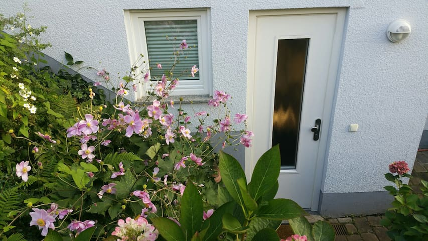Helle 2-Zimmer-Wohnung in ruhigem Einfamilienhaus