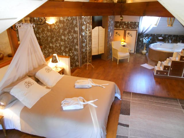 Suite romantique balneo billard, entrée ext privée - Tavers - Bed & Breakfast