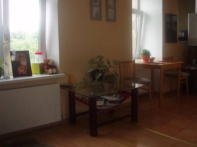Супер квартира для airbnb! - Rīga - Apartment