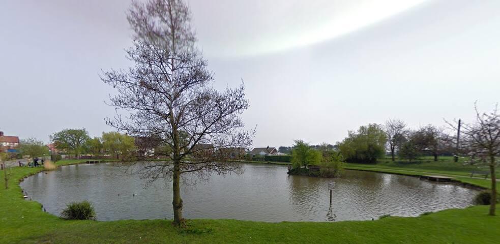Modern Semi overlooking duck pond. - Wootton