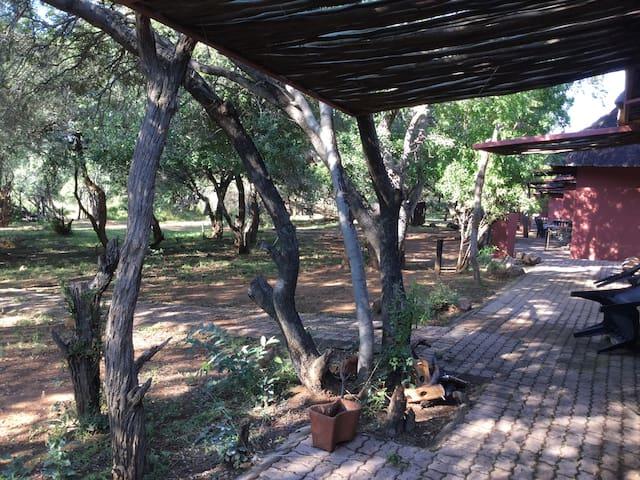 Beautiful African Bush Lodge - Bela-Bela - Bungalow