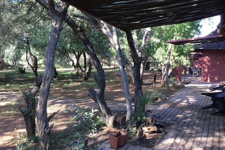 Beautiful African Bush Lodge - Bela-Bela - Bungalow