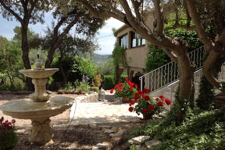 Le Patio Fleuri-Mimosa - Lorgues - Bed & Breakfast