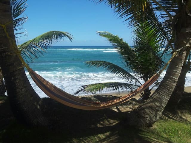 Beachfront beachgoers delight! - Hatillo