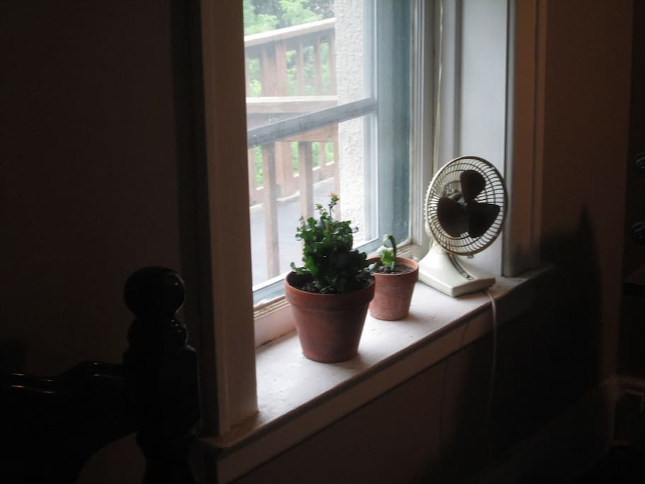 Two windows in this room provide great view of side and backyard garden which is open for all guests.