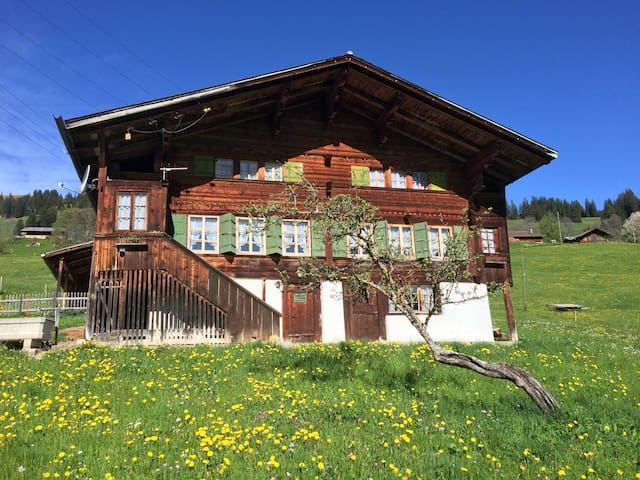 Old mountain-farmhouse, authentic - Boltigen - Casa