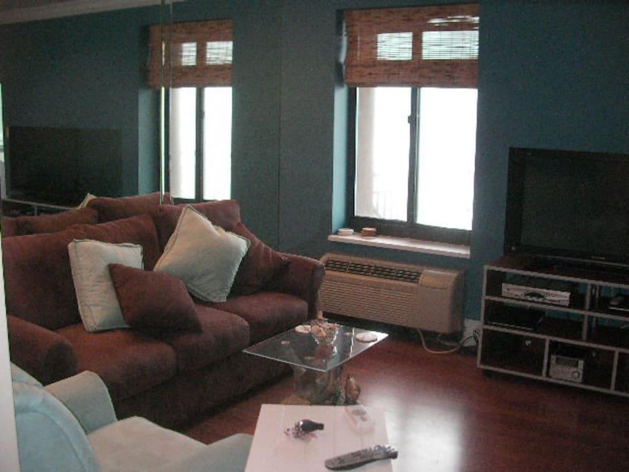 LivingRoom Area / Sleep Sofa