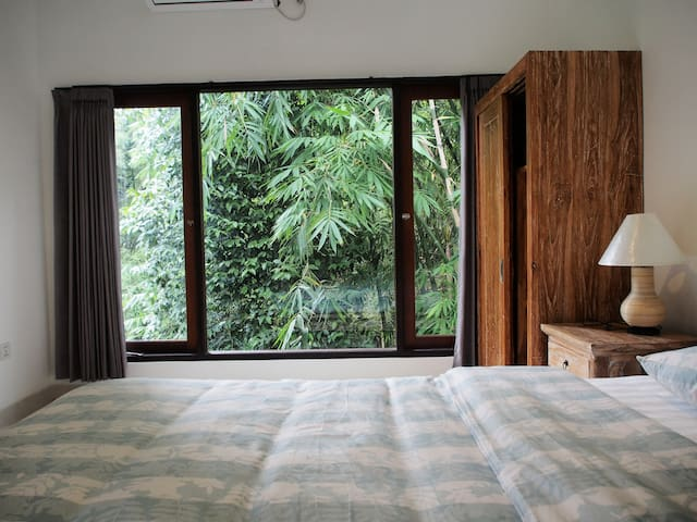 This room with jungle view