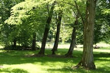 une vue du parc