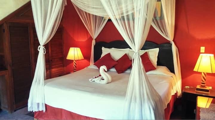 Estandar  Suite, 1 bed, Mexicana Hotel, CENTRO