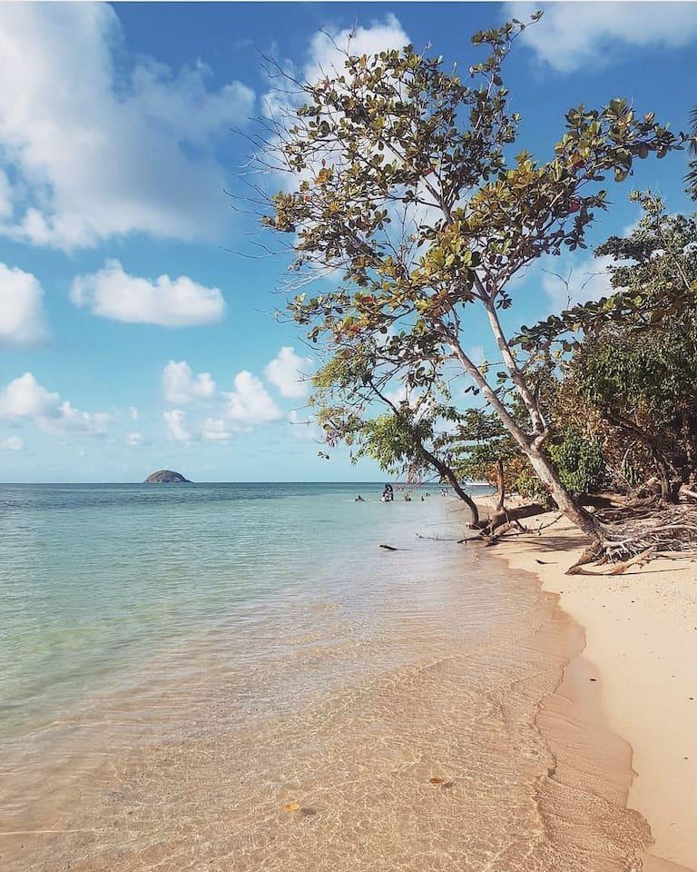 La plage L'Autre Bord - Trinité (15 minutes en voiture)