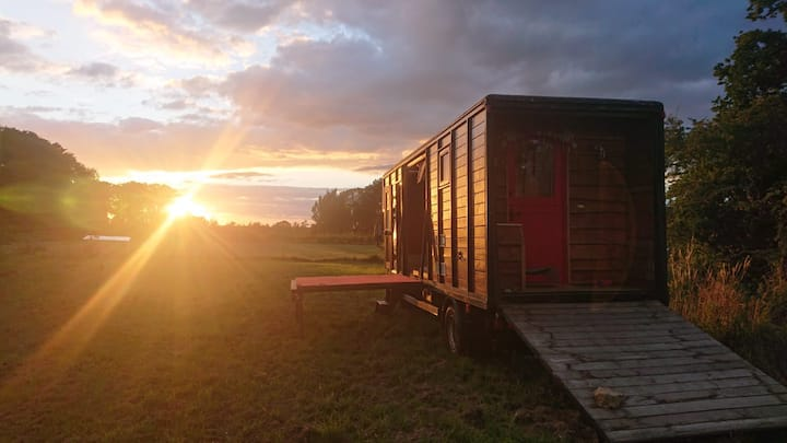 Quirky Horsebox, private and idyllic, nature x