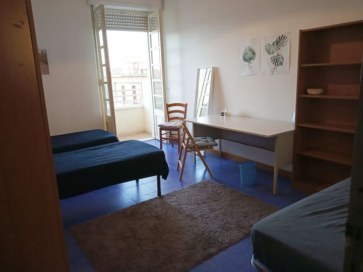 Cheap single/twin/triple room in the city center