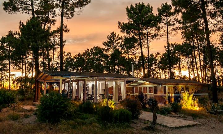 Unique Cottage in Eco Resort