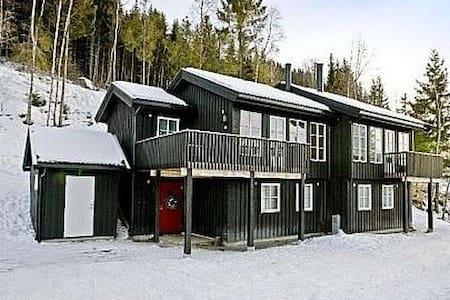 Hytte midt i bakken, ski in ski out - Øyer