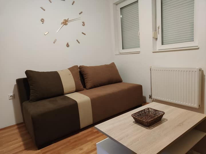 Nicely renovated room in a spacious apartment