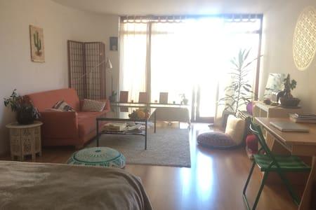 Generous, central, 1 - room apartment,